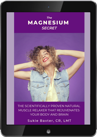 Magnesium Secret Ipad Cover